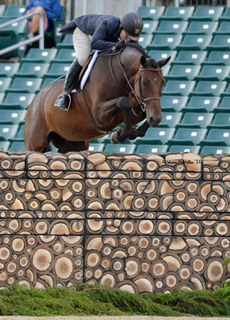 Equine Jumping