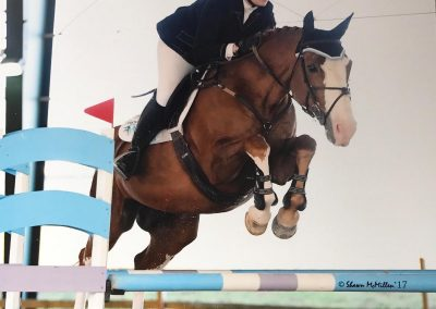 Chicky and Anvari jumping
